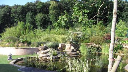Création et entretien d'un bassin