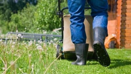Entretien de pelouses