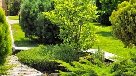 Entretien d espaces verts projardins for Entretien jardin emploi