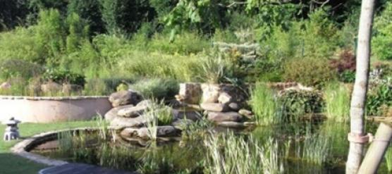Le renouveau des espaces verts d'un syndic de copropriété à Orsay