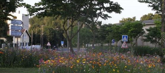Paysagistes Essonne : PROJARDINS, au service des copropriétés
